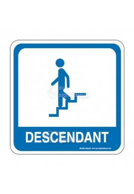 Escalier descendant PvcSign