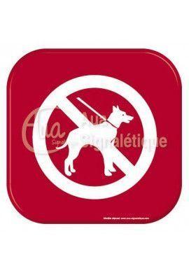 Autocollant Vinylopicto chien interdit