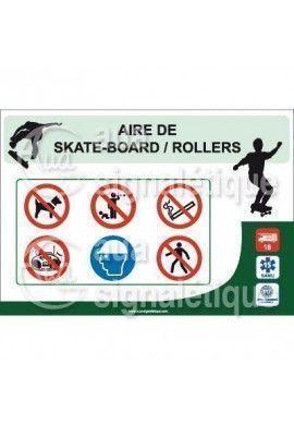 Panneau Aire de SkateBoard Rollers