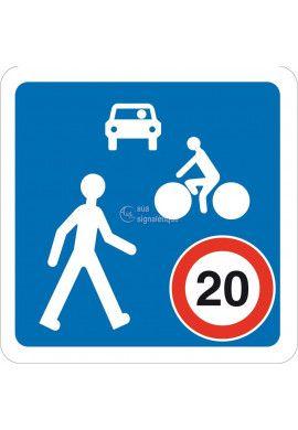 Panneau Chemin obligatoire pour... - B52