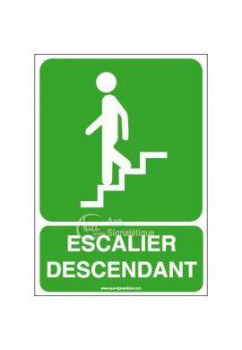 Panneau Escalier descendant-AI