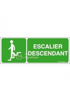 Panneau Escalier Descendant - B