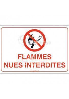 Panneau Flammes Nues Interdites - AP