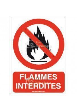 Panneau Flammes interdites-AI