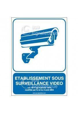 Panneau Etablissement sous Surveillance Vidéo02 - v