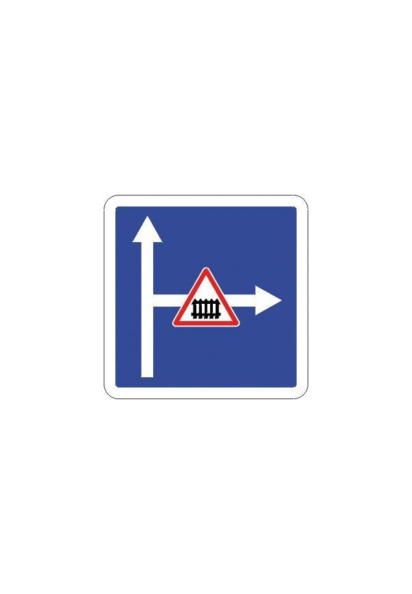 Panneau Conditions particulières sur la route - C24c_ex1