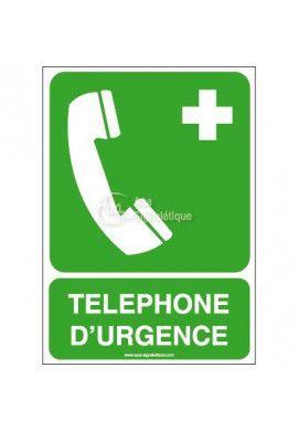 Téléphone d'urgence E004-AI