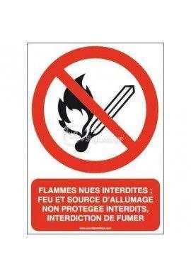 Flammes nues interdites; Feu et source d'allumage non protégée interdits, interdiction de fumer P003-AI Aluminium 3mm 150x210 mm