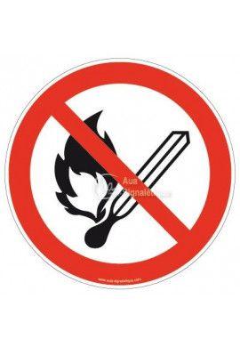 Flammes nues interdites; Feu et source d'allumage non protégée interdits, interdiction de fumer P003