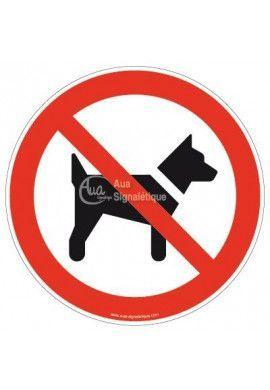 Interdit aux chiens P021