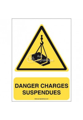 Danger, Charges suspendues W015-AI