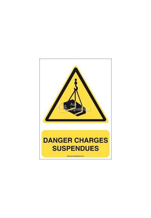 Danger, Charges suspendues W015-AI