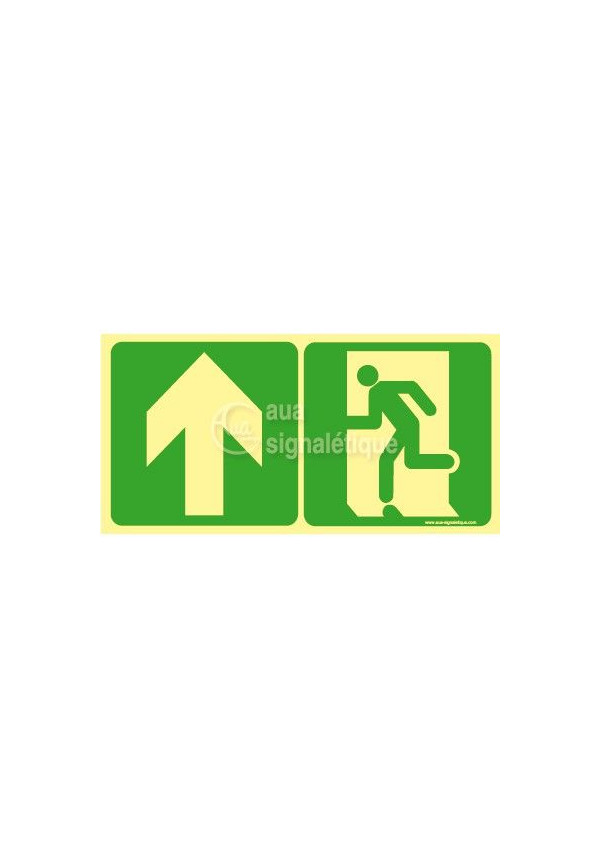 Panneau Direction de sortie, droit devant-PH-C